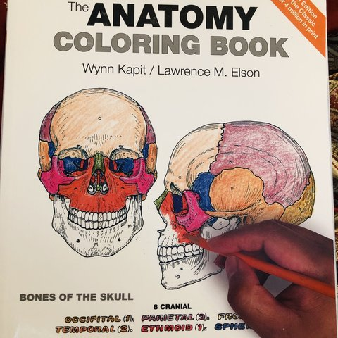 The Anatomy Coloring book 4th edition Wynn Kapit / Lawrence - Depop
