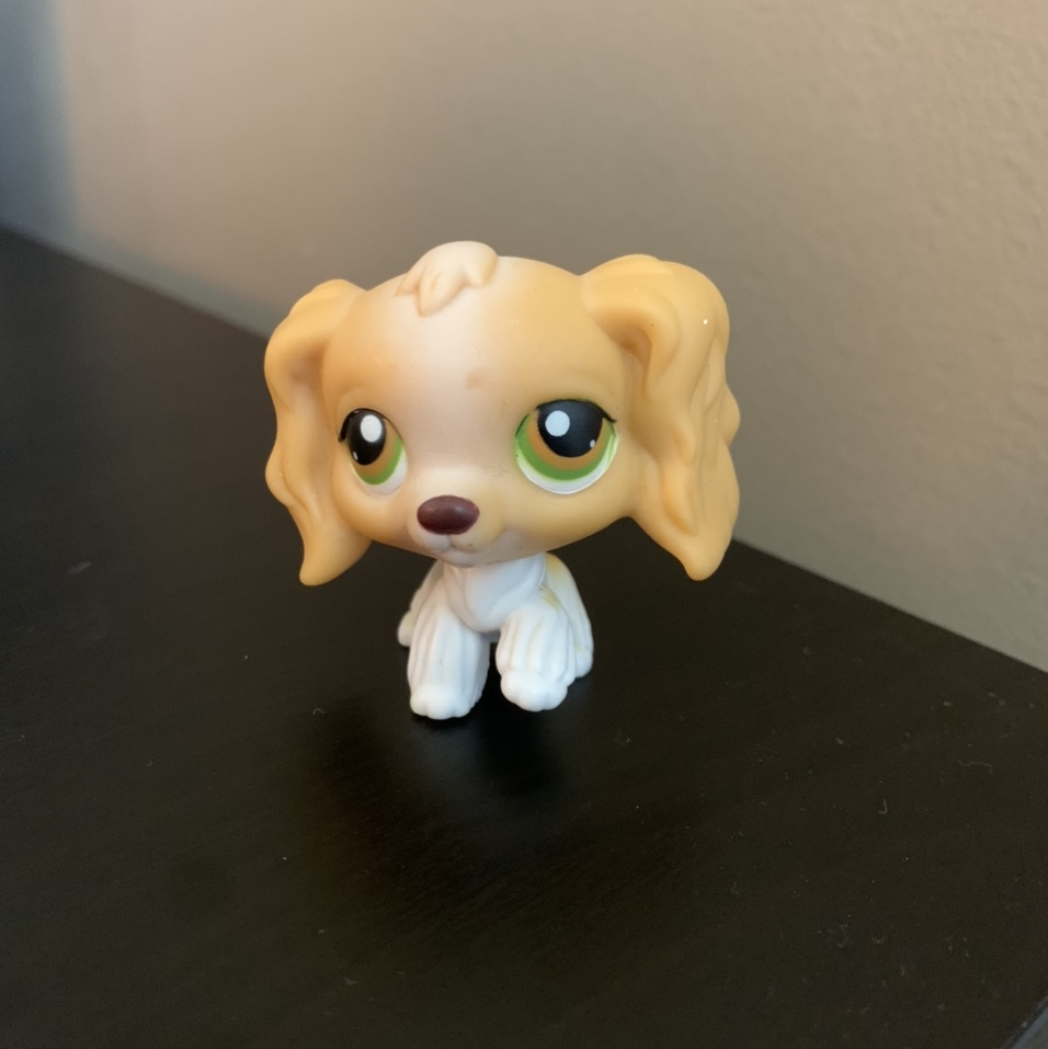Product Image 1 - ON HOLD DONT PURCHASE littlest pet