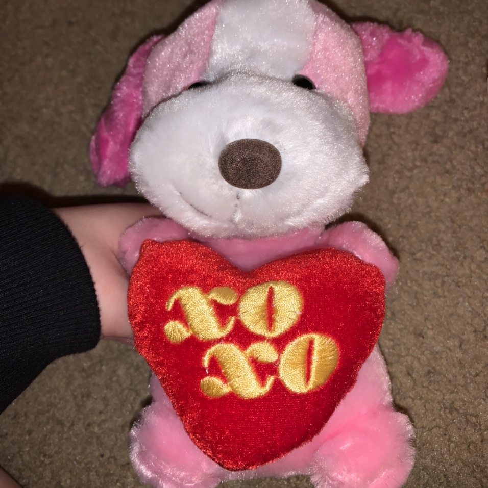Product Image 1 - valentine's day heart puppy xoxo