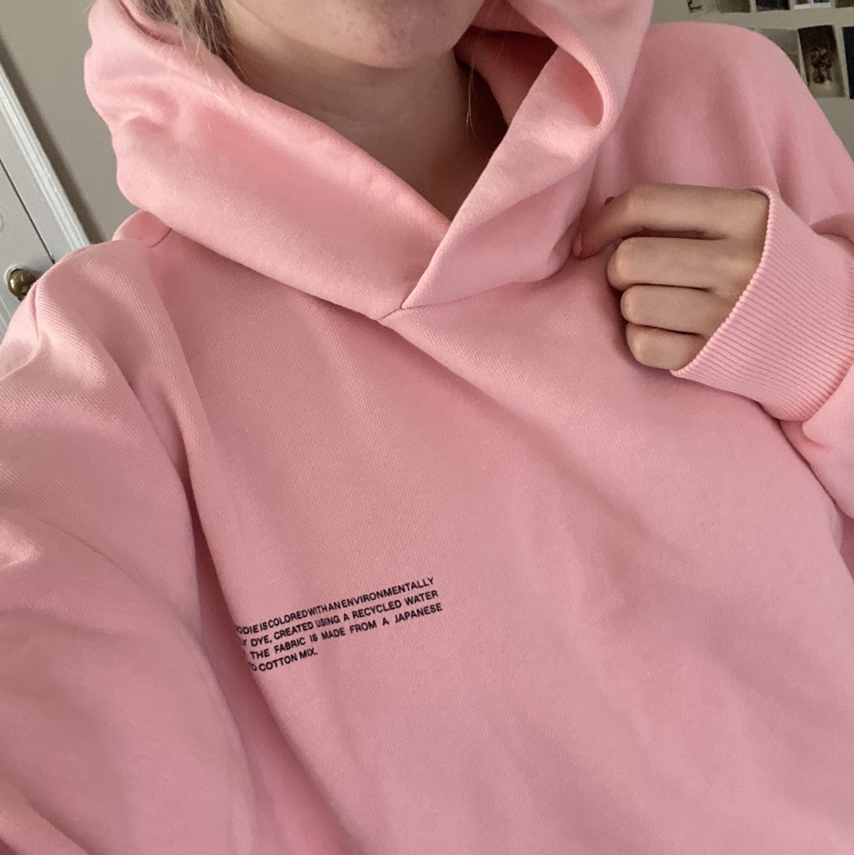 Product Image 1 - pangaia heavyweight hoodie in pink