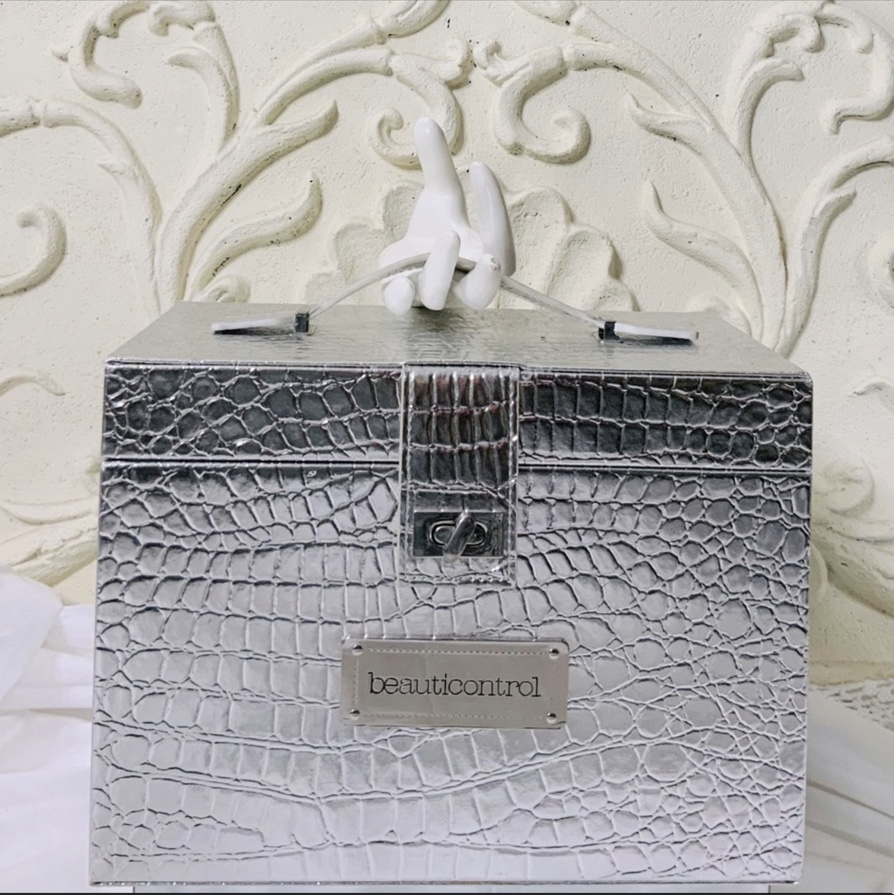 Product Image 1 - Silver Croc Embossed Train Case