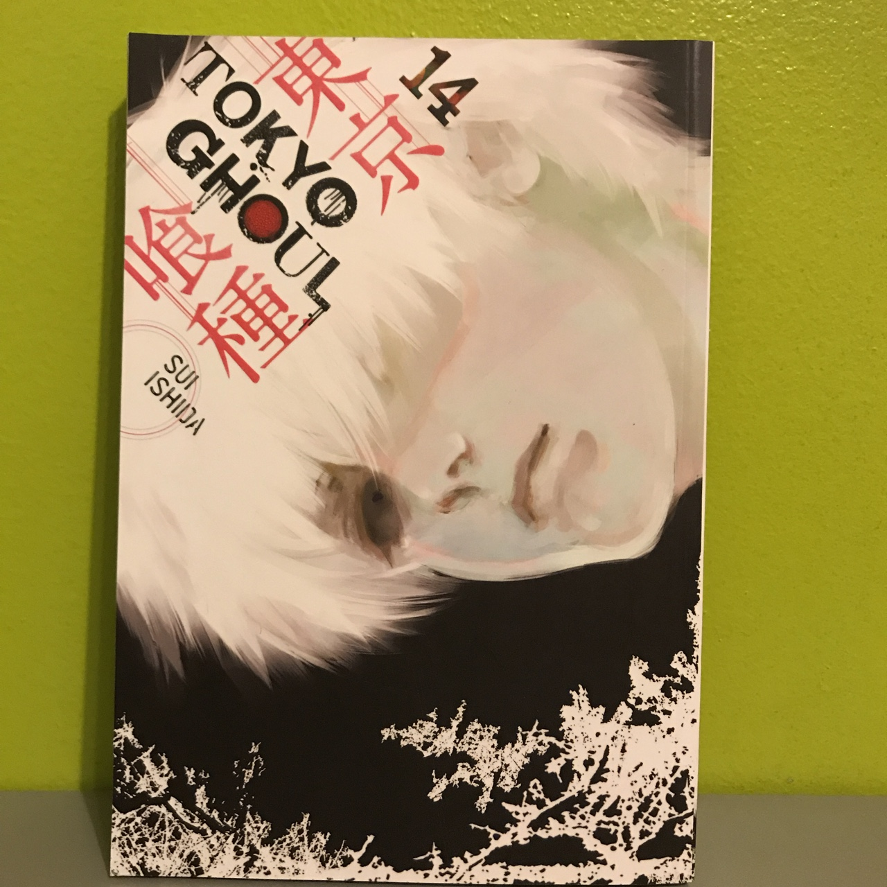Tokyo Ghoul Vol  1 Can combine w my other manga post for